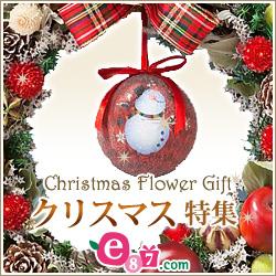 千趣会イイハナ 2013クリスマス特集