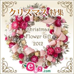 e87.com(千趣会イイハナ) クリスマス特集 2012