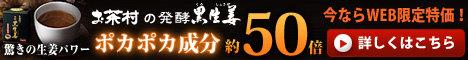 発酵黒生姜