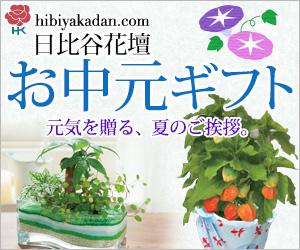 日比谷花壇 お中元ギフト2014