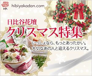 日比谷花壇 2012クリスマスフラワーギフト