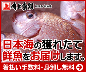 角上魚類の鮮魚通販