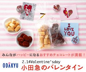 小田急のバレンタイン 2013