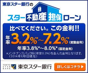 東京スター銀行 スター不動産担保ローン