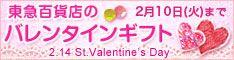東急百貨店 2012バレンタインギフト